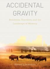 Accidental Gravity