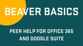 Beaver Basics slide